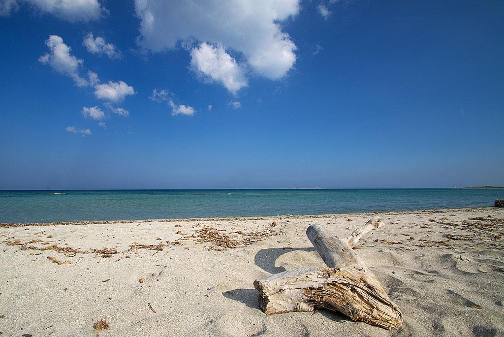 Pantai Riserva Vendicari, Sicily